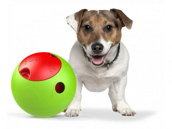 Foobler ball aktivitetsleke